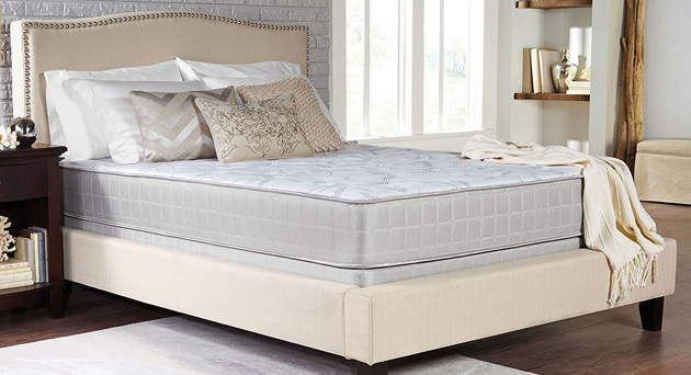 Plush Queen Mattress